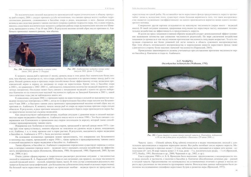 Fishes_Kamchatka_1