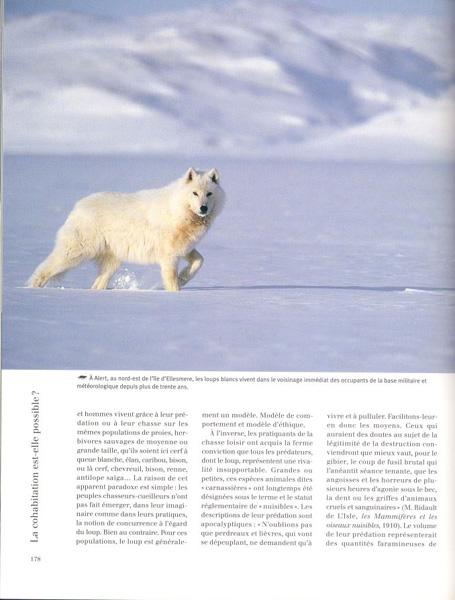 Les_Loups_3