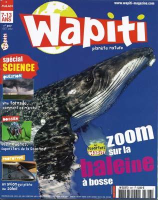 Wapiti_10_12_2