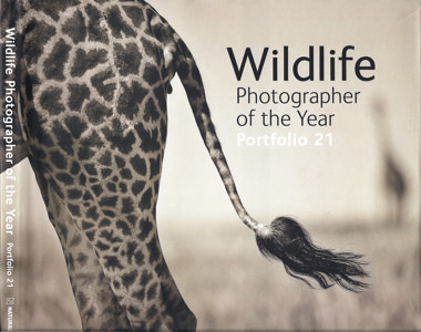 Wildlife_Photographer