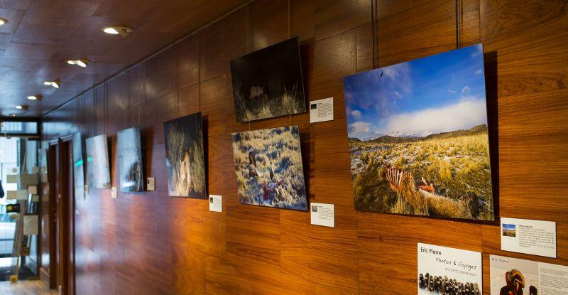 Mon exposition sur la Patagonie